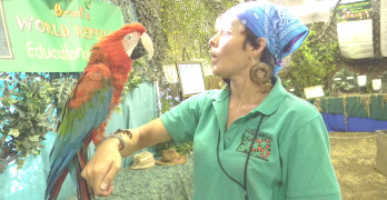 MARGARITA, a scarlet macaw, entertains her handler, Shanti Kriens, at the Brad's World Reptiles exhibition at the county fair. Donna Beth Weilenman/Staff